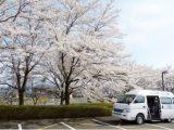 4/27 お花見バスハイク